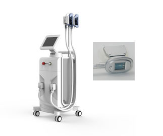 Ultra Slim Belly Fat Removal Machine , 1000W Cryogenic Lipolysis Machine