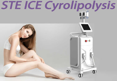 3 Handles Body Slimming Fat Freezing Machine Coolsculpting Equipment Vertical Type
