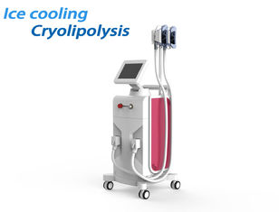 Cool Tech Cryolipolysis Fat Freezing Machine Painless Fat Freeze For Weight Loss